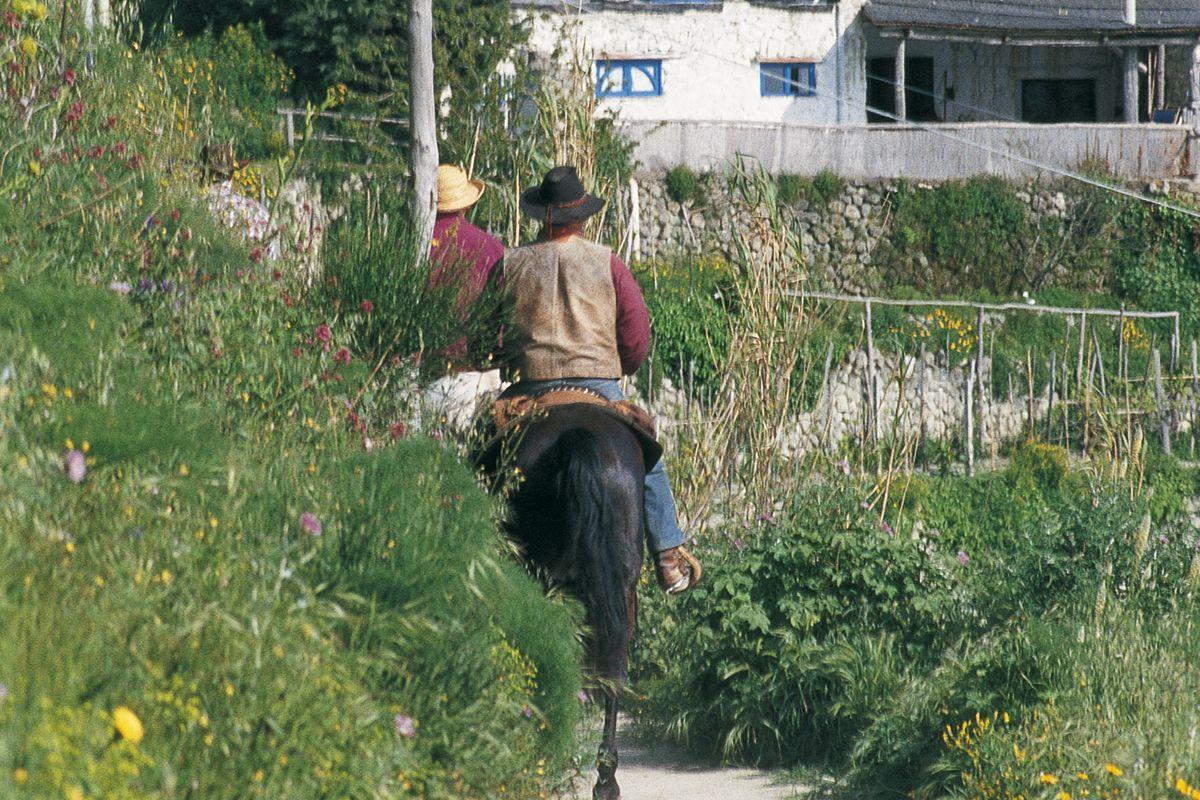 Equitazione a Ischia